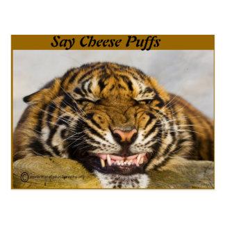 Say Cheese Puffs Postcard