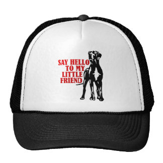 say hello to my little friend mesh hats