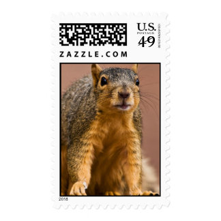 Say It Ain't So Postage Stamps