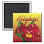 Say it with Aloha! Magnets