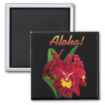 Say it with Aloha! Magnets 2