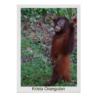 Say No to Bullies - Krista Orangutan Posters