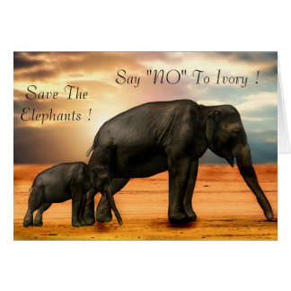 "Say ""NO"" To Ivory Card"