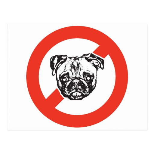 Say No to Pugs Postcard