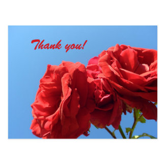 Say Thank you with pink roses Postcard