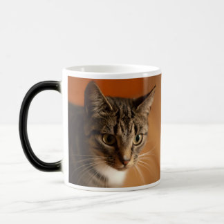 Say Whaat Cat Cup - exclusively from MogsOnMugs Mugs