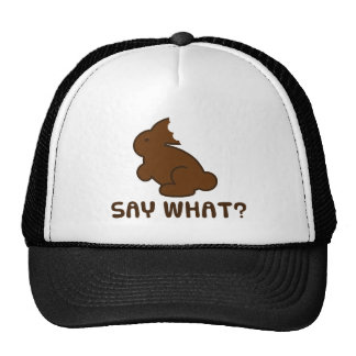 Say What? Trucker Hat