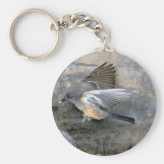 Say's Phoebe approaching nest Key Chain