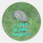 SB_16821088, I LOVE BUNNY RABBITS STICKERS