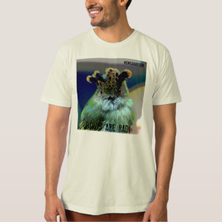 Scale-Crested Pygmy Tyrant: Birds are Rad T-Shirt