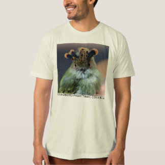 Scale-Crested Pygmy Tyrant from Costa Rica T-Shirt