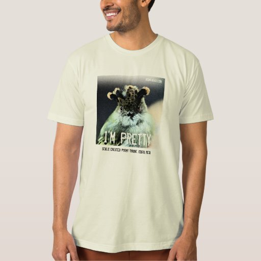 Scale-Crested Pygmy Tyrant: I'M PRETTY T-Shirt
