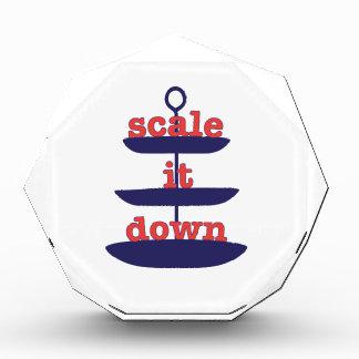Scale It Down Acrylic Award