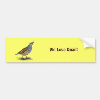 Scaled Quail Bumper Stickers