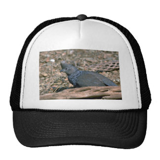 Scaled quail trucker hat