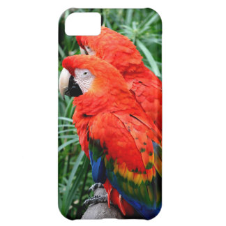 Scalet Macaw iPhone 5C Covers