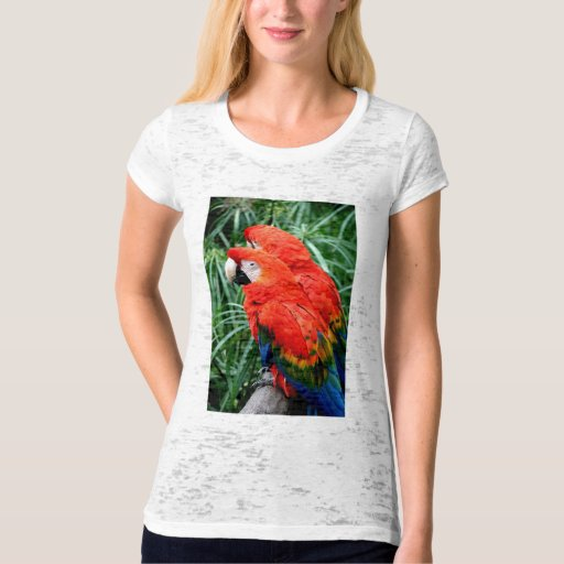 Scalet Macaw T-Shirt