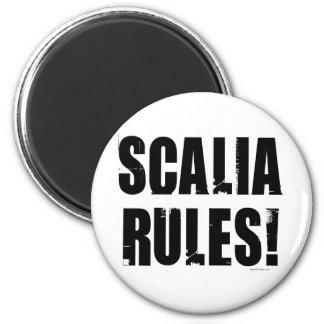 Scalia Rules Fridge Magnets