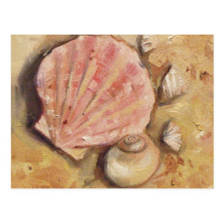 Scallop and Moonshell Postcard