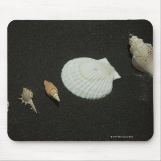 Scallop Mouse Pad