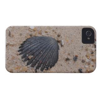 Scallop on beach Blackberry Bold Case