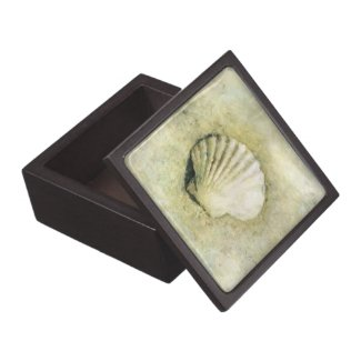 Scallop Sea Shell Beach Decor Trinket Box planetjillgiftbox