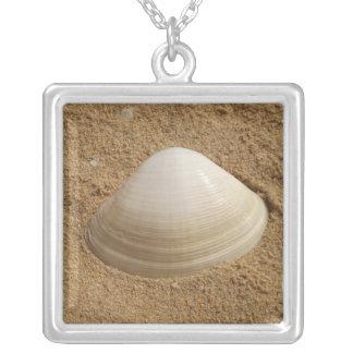 Scallop seashell on sand jewelry