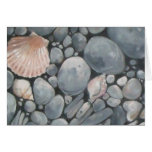 Scallop Shell and Black Stones Greeting Cards