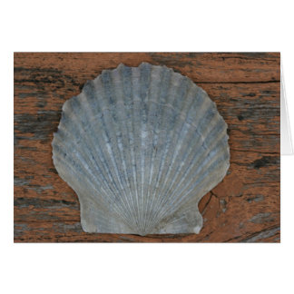 Scallop shell card