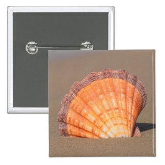 Scallop Shell| Crete, Greece Pinback Button