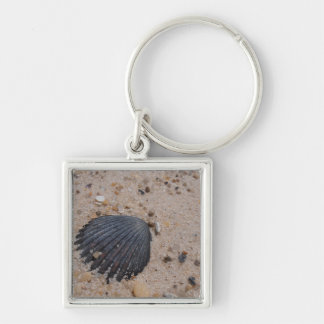 Scallop Shell keyring Silver-Colored Square Keychain