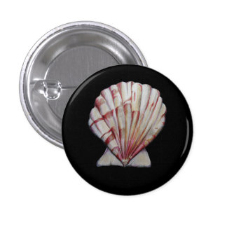 scallop shell pin