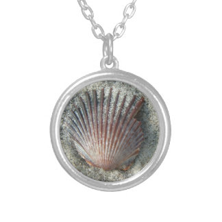 Scallop Shell Silver Plated Necklace