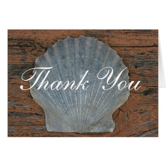 Scallop Shell Thank You Card