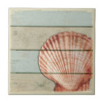 """Scallop Shell Tile<br><div class=""""desc"""">A scallop shell on a pastel distressed background.</div>"""