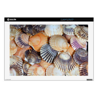 Scallop Shells Laptop Skins
