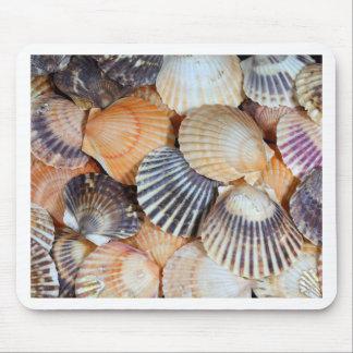 Scallop Shells Mouse Pad