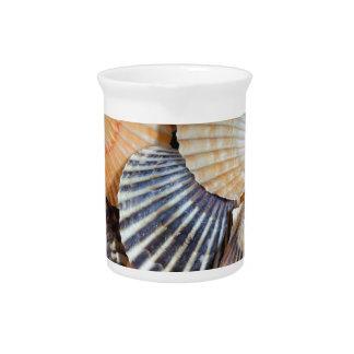 Scallop Shells Pitcher