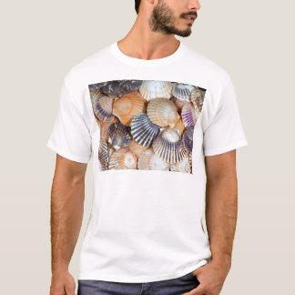 Scallop Shells T-Shirt
