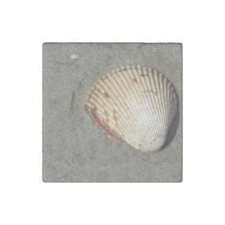 Scallop Stone Magnet