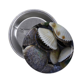 Scallops Button