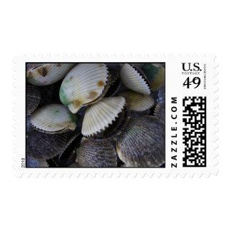 Scallops Postage