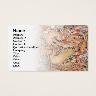 Scampi Business Card