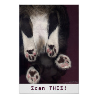 Scan THIS! Poster/Print