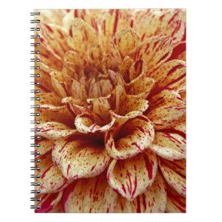 Scandalous Virtue Spiral Notebook
