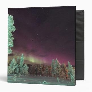 Scandinavia, Finland, Lapland, Kakslauttanen, Binder
