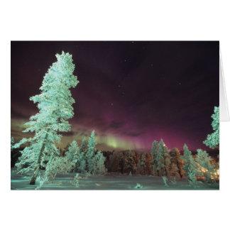 Scandinavia, Finland, Lapland, Kakslauttanen, Card