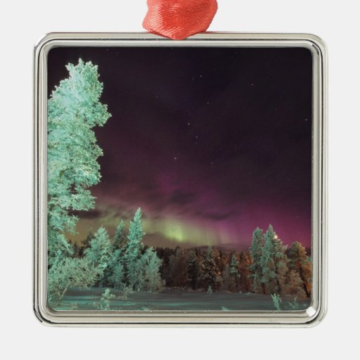 Scandinavia, Finland, Lapland, Kakslauttanen, Christmas Tree Ornament