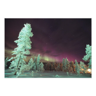 Scandinavia Finland Lapland Kakslauttanen Photo
