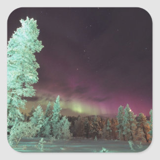 Scandinavia, Finland, Lapland, Kakslauttanen, Square Sticker